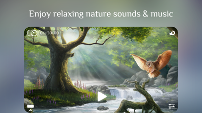 Flowing ~ Meditation in Nature