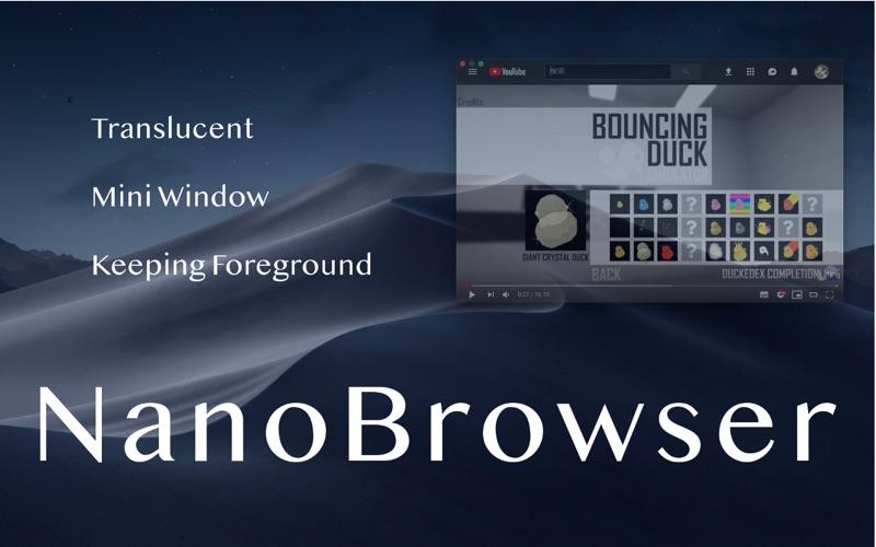 小型网络浏览器 :NanoBrowser