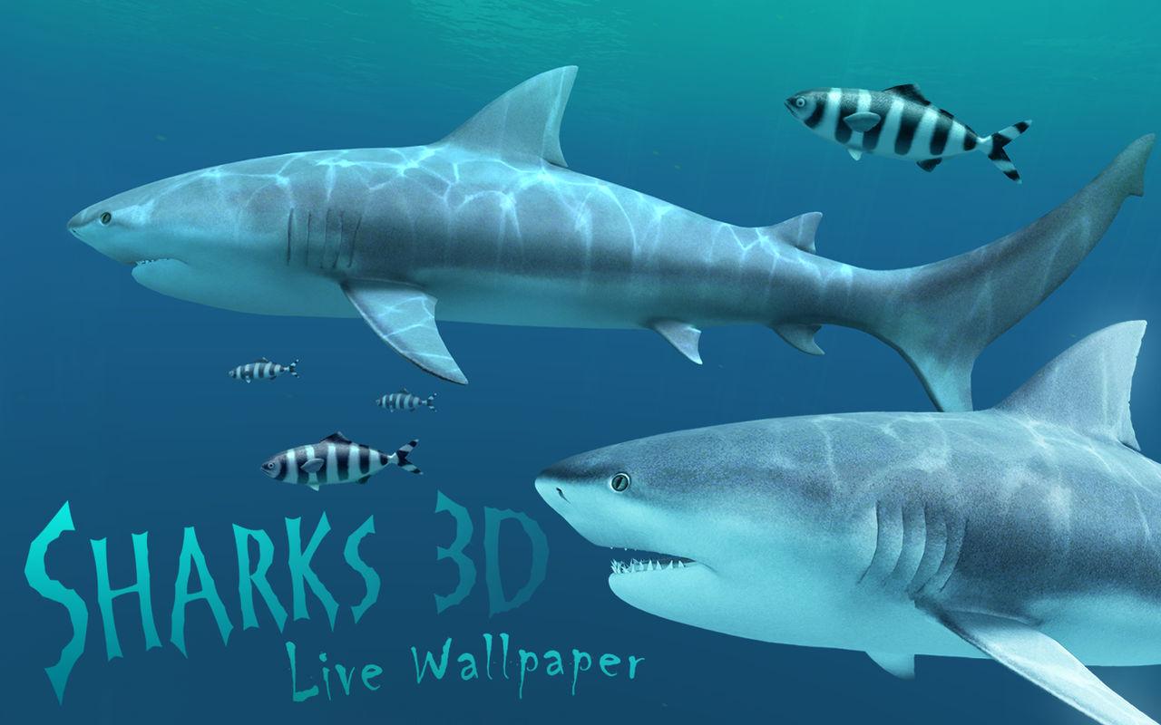 Sharks 3D 1.3.03D动态鲨鱼壁纸